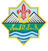 primary school scout award logo